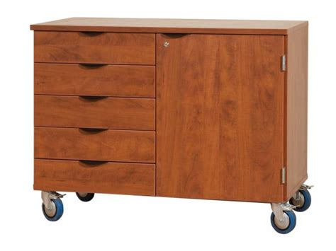 Mobile Storage Drawers by Mobile Storage Cabinet With Door 5 Drawers 1 Adj Shelf