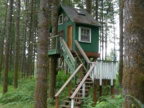 tree houses amazing tree house hits all