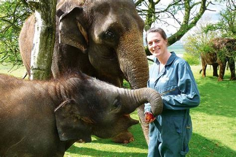 Zoo Keeper by Zsl Whipsnade Zoo Keeper For A Day Experiences Zookeeper Days