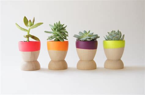 small pot plants mini flower pots neon color ideas home design and interior