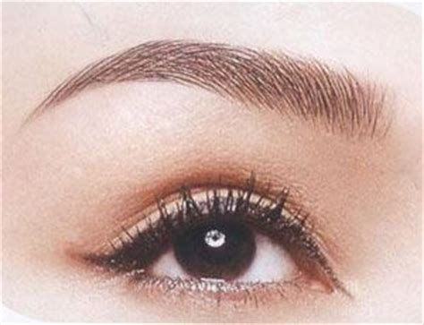 tattoo eyebrows sheffield 66 best permanent makeup images on pinterest permanent