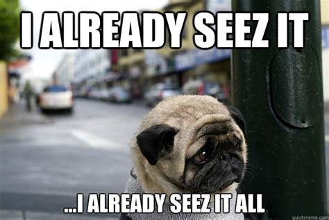 Depressed Pug Meme - depressed pug memes quickmeme