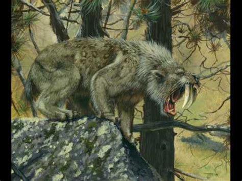 imagenes animales prehistoricos animales prehistoricos youtube