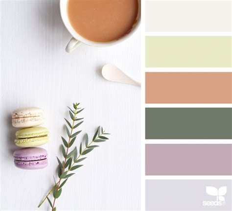 design seeds instagram color treat design seeds
