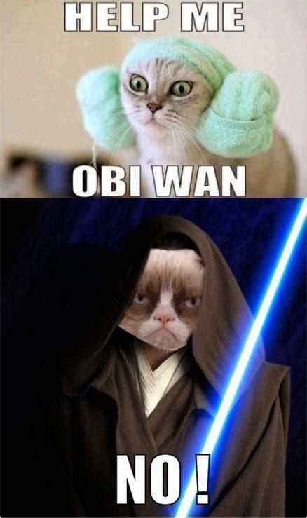 Help Me Meme - help me obi wan grumpy kitty pinterest