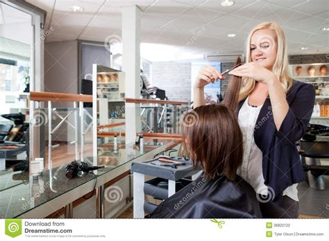Hair Dresser On by Hairdresser Cutting Client S Hair Stock Photography