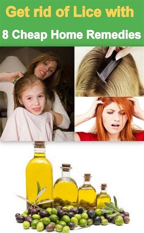 get rid of lice easily with 8 home made remedies that are
