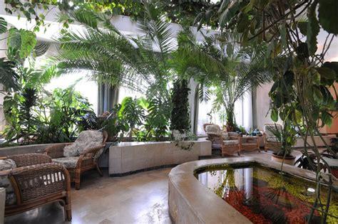 piccole piante da interno piante d appartamento sui davanzali consigli utili su