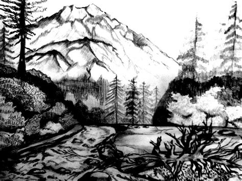 coloring pages for adults nature free coloring pages of scenery