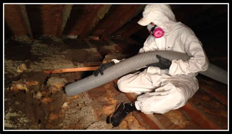 attic cleaning 1 attic cleaning service orange county gt clean up attic