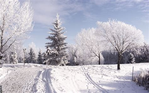desktop themes snow snow hd wallpapers wallpapersafari