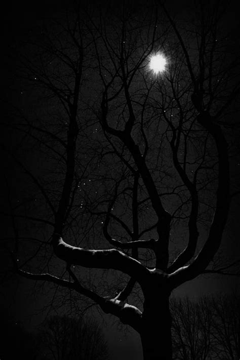 17 Best images about DARK HOLLOWS on Pinterest | Witches