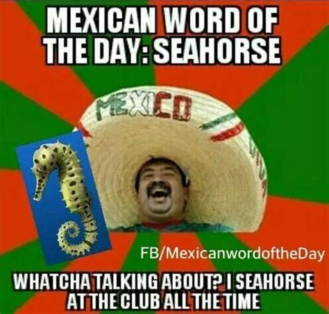 Mexican Meme Jokes - 17 best images about mexican word of the day on pinterest