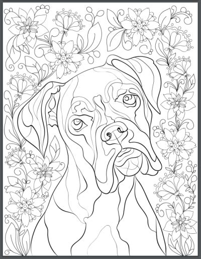 coloring page boxer dog free printable boxer dog adult coloring pages free adult
