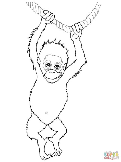 Outline Drawing Orangutan by 301 Moved Permanently