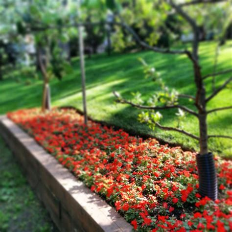 Garden Services by Jlp Landscaping Services 10 Photos Landscaping Wauconda Il Phone Number Yelp