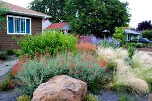 drought tolerant landscapes drought tolerant garden with gravel creative landscapes