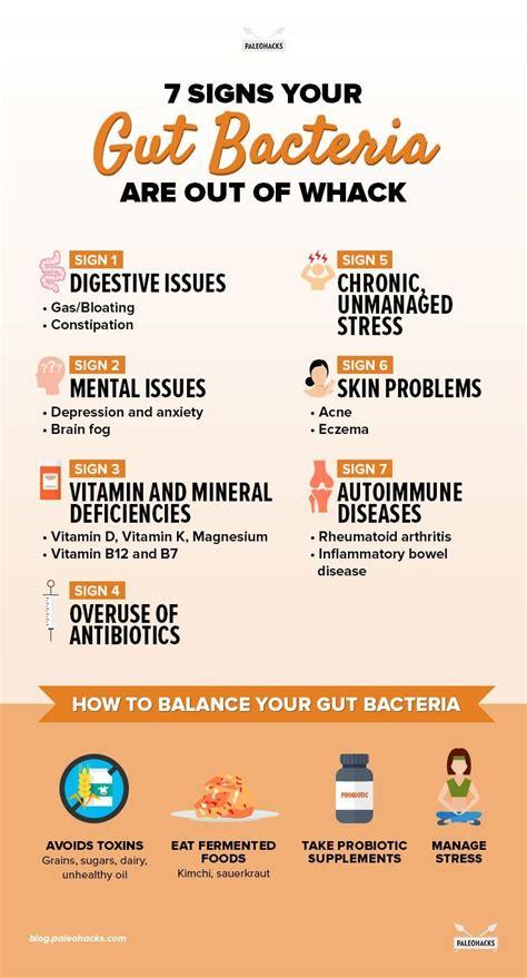 best gut bacteria best 25 gut bacteria ideas on gut health