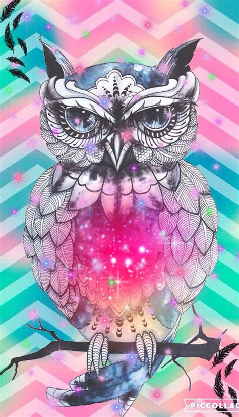 wallpaper for iphone 6 owl 49 best images about hispter wallies create by me on