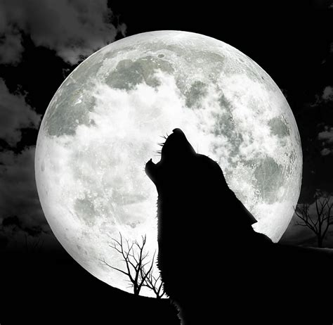 astronomy behold the wolf moon crash course