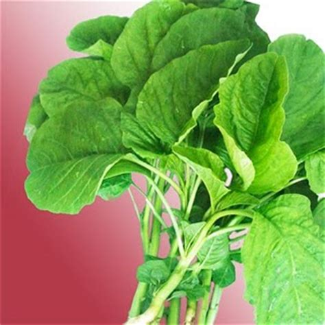 ongrizinal recipe spinach is not bayam