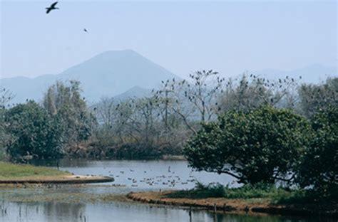 mai po natural reserve regal riverside hotel