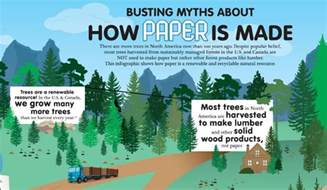 How Is How Paper Is Made The Infographic Woodland Paper
