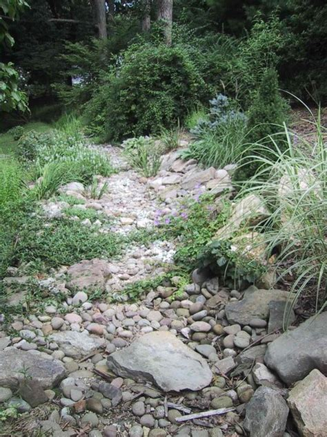 stream bed dry stream bed