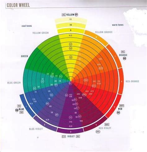 loreal hair color wheel image professional hair color wheel jpg haircolor wiki