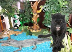 d 233 coration animaux de la jungle pour anniversaire