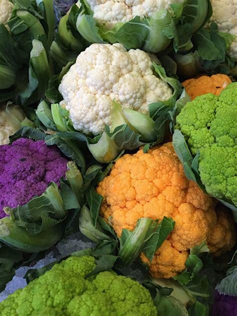 colored cauliflower multi colored cauliflower photo courtesy esposito