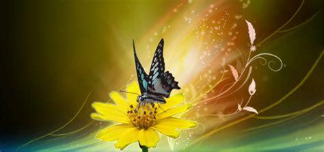 farfalla fiore cielo in ascolto cuore