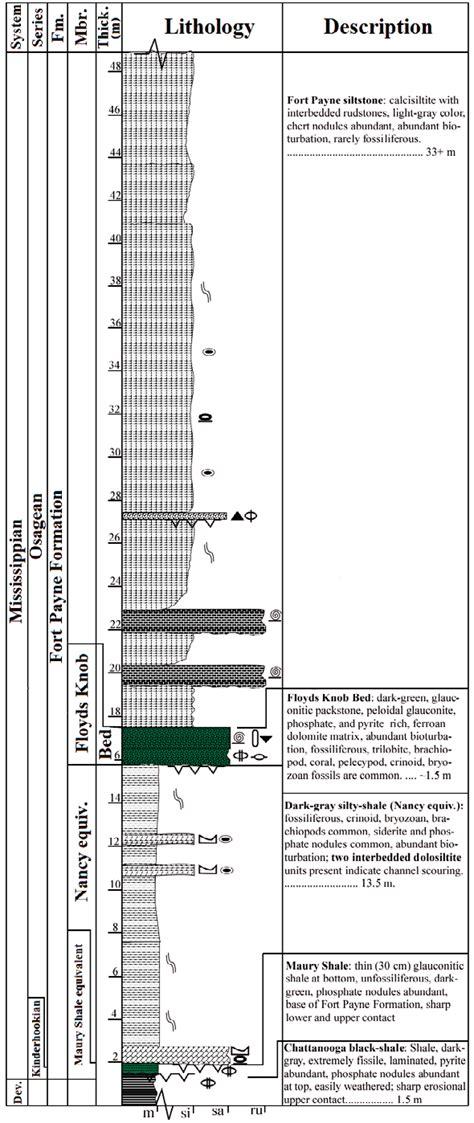 columnar section columnar section of the fort payne formation at stop 8