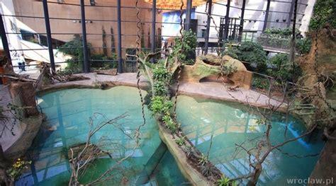 zoologischer garten breslau afrykarium wrocław zwiedzanie zdjęcia wideo www