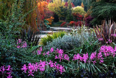 Botanical Gardens Vancouver Vandusen Botanical Garden Bloedel Conservatory