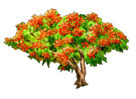 poinsiana tree decorations decorations packages hay day wiki fandom powered by wikia