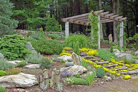 garden with rocks bark mulch vs rock mulch which is better gt landscapes