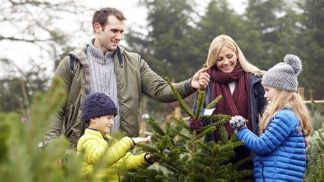 wann tannenbaum kaufen weihnachtsb 228 ume kaufen wann und wo gibt es die besten