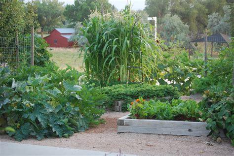 Time To Plant Your Vegetable Garden Time Vegetable Garden