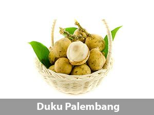 products total buah segar