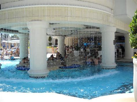 Bar Im Pool by Bed Bug Picture Of Caesars Palace Las Vegas Tripadvisor
