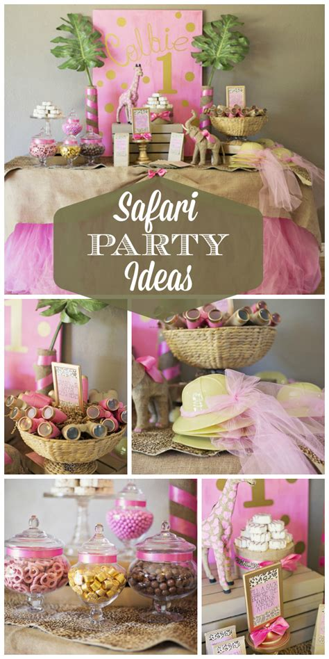 themed birthday supplies pink gold safari glam birthday quot colbie s 1st safari