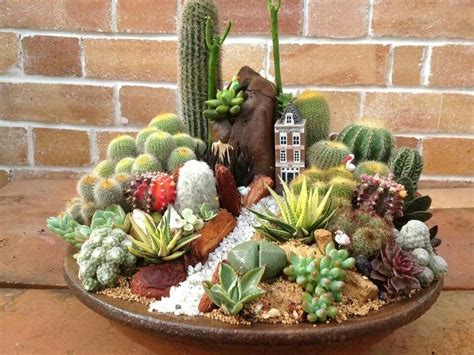 Precioso Cactus Y Suculentas Pinterest Cacti Dish Garden Ideas