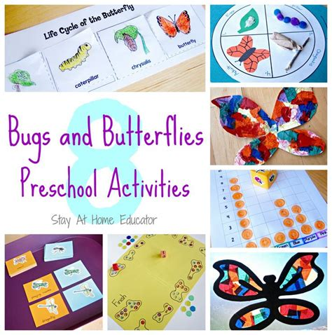 kindergarten themes and activities 156 best images about bugs and butterflies preschool theme