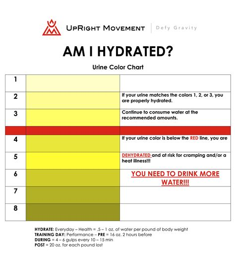 hydration urine chart doc 520516 urine color chart urine color chart and