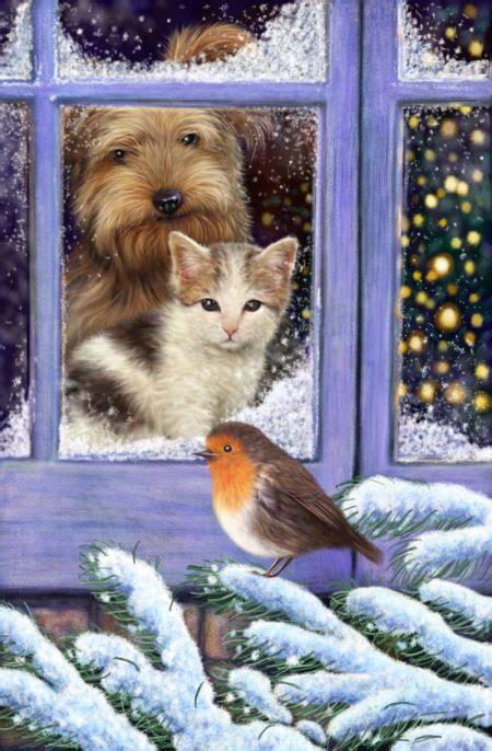 scott wilson cat dog window robin cat art illustration winter art dog window