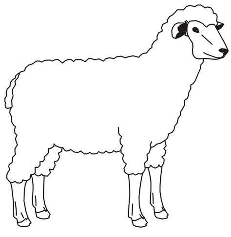 coloring pages of sheep dogs farm animal template animal templates free premium