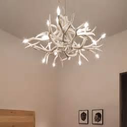 jason miller antler chandelier superordinate antler chandelier 24 antlers jason