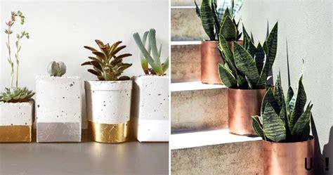 como decorar plantas con macetas decoraci 243 n con plantas
