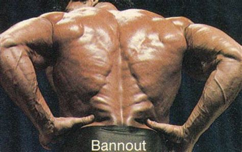 tree back muscles a truly samir bannout bodybuilding forums